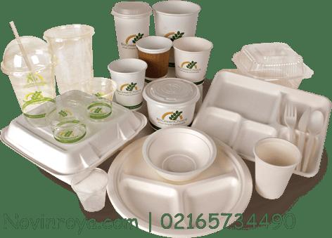 تولید ظروف یکبار مصرف فومی