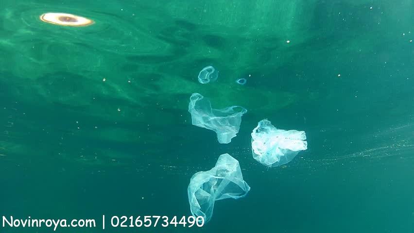 چرا به کیسههای پلاستیکی نه بگوییم؟