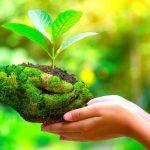 سازگار با محیط زیست یعنی چه؟