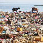 راهکارهای مقابله با آلودگی پلاستیکی