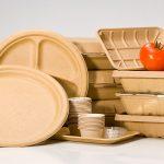 ظروف یکبار مصرف گیاهی زیست تخریب پذیر